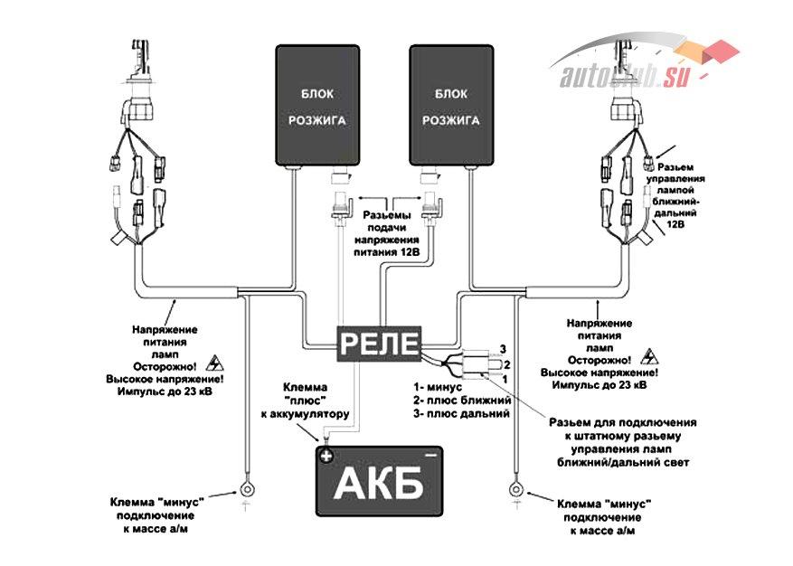Схема подключения ксенона d2r