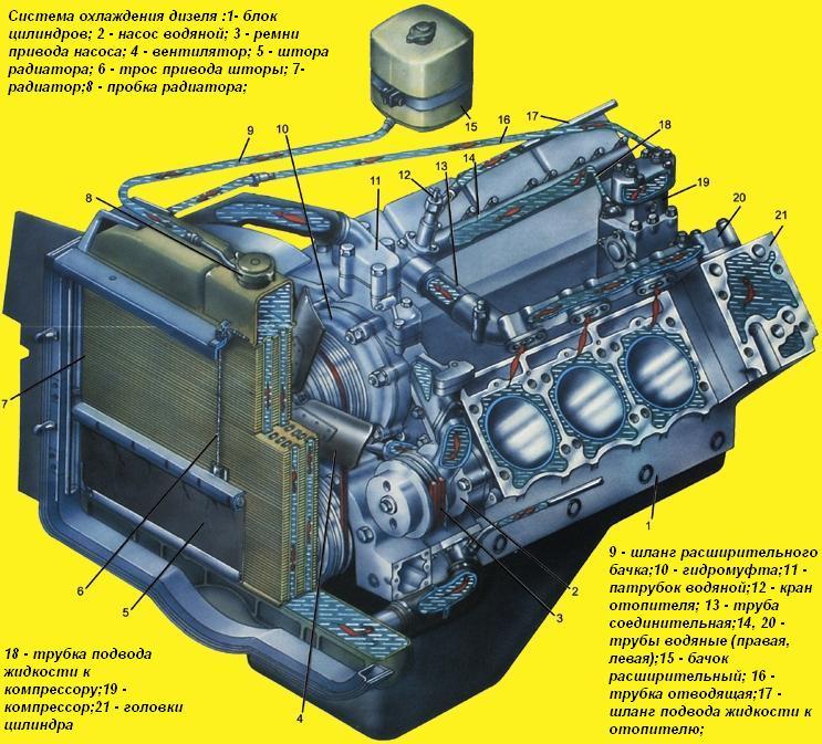Схема расположения водяного насоса на двигателе автомобиля КАМАЗ